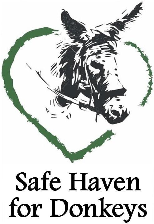 Safe Haven for Donkeys